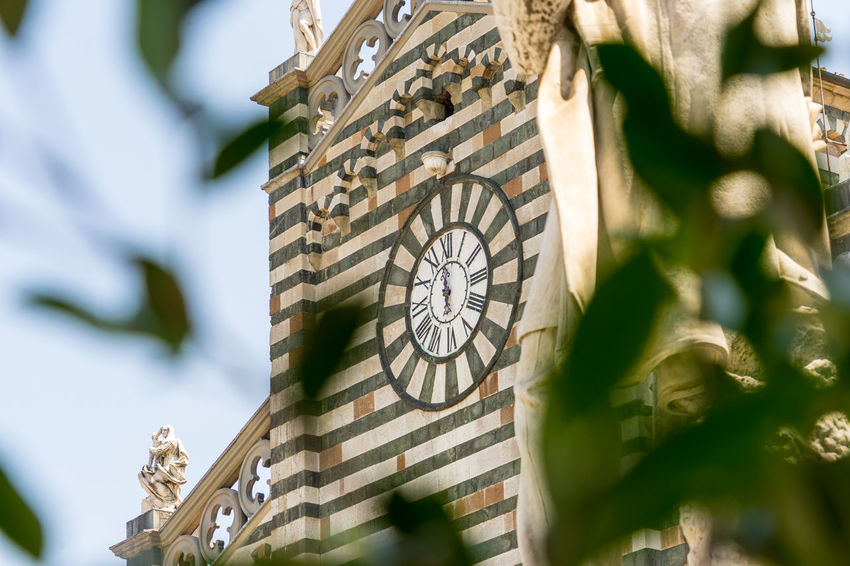 Shot taken in the city of Prato, Italy Architecture Art And Craft Building Exterior Built Structure Clock Clock Face Close-up Creativity Day Focus On Background Low Angle View Minute Hand Nature No People Outdoors Plant Selective Focus Sunlight Time Tree