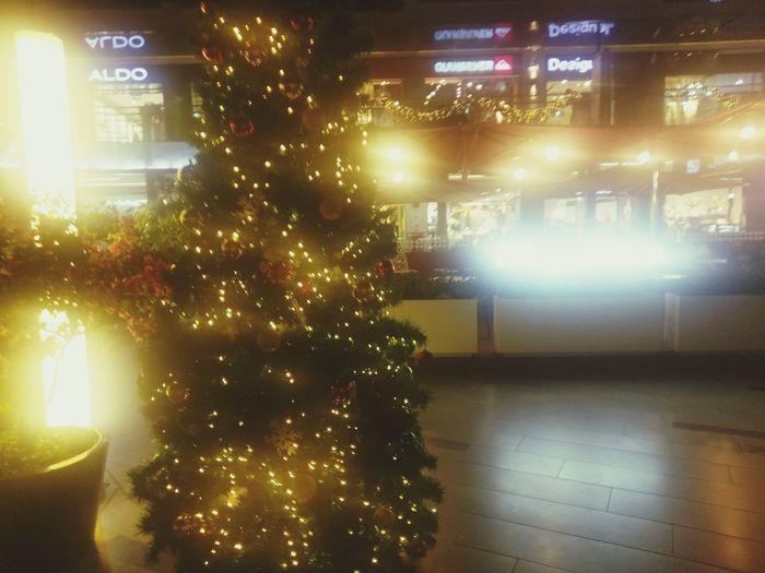 elemento navideño Arbol De Navidad Elemento Navideño Esperanza Família Adorno Illuminated Night Christmas Indoors  Celebration No People Christmas Decoration