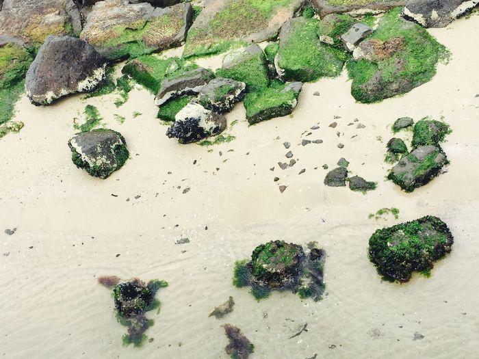Ocean stone stunning