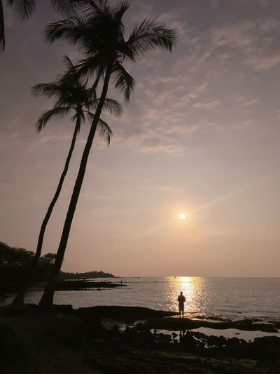 Hawaii Beach Beauty In Nature Horizon Over Water Nature One Person Outdoors Palm Tree Real People Scenics Sea Silhouette Sky Standing Sun Sunlight Sunset Tranquility Water Hawaii Life Lost In The Landscape