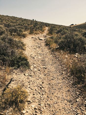 trail running at the end of the summer in Northern Utah. Park City, Utah Running Utah Wasatch Back Wasatch County Sky Nature No People Pattern Day Land Landscape