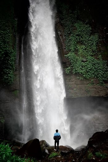 Rear view of man standing against waterfall in forest