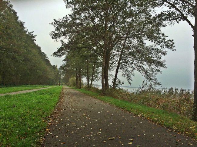 Steinhuder Meer Running Trailrunning Nature_collection