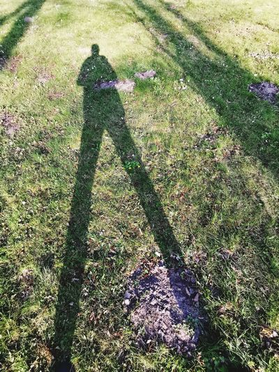 Shadow Sunlight Men High Angle View Focus On Shadow Grass Green Color Long Shadow - Shadow Ground Backgrounds Growing Friend Field Unrecognizable People