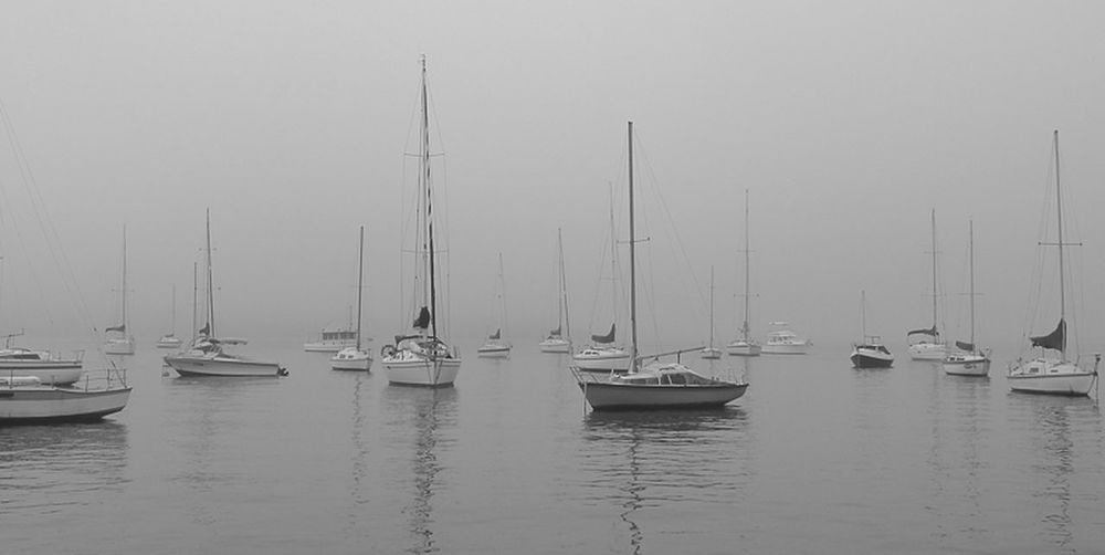 Down In The Past - Foggy Morning Monochrome Eyem Best Shots EyeEm Nature Lover EyeEm Best Edits