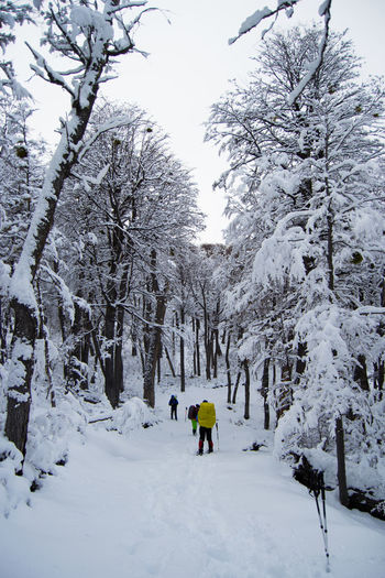 Cerro La Torta Adventure Beauty In Nature Cold Temperature Day Full Length Nature One Person Outdoors People Real People Scenics Sky Snow Tranquil Scene Tranquility Tree Weather White Color Winter Go Higher The Great Outdoors - 2018 EyeEm Awards