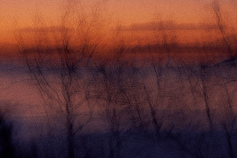 Abstract sunset... Colors Reflection Abstract Backgrounds Bare Tree Beauty In Nature Branch Focus On Foreground Fog Forest Hazy  Nature No People Non-urban Scene Orange Color Outdoors Plant Scenics Scenics - Nature Silhouette Sky Sunset Tranquil Scene Tranquility Tree