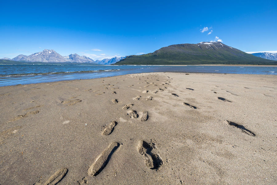 Arctic Beach Beauty In Nature Blue Sky Day Fjord Landscape Lyngen Lyngen Alps Lyngsalpene Mountain Nature No People Northern Norway Norway Outdoors Sand Sea Sky Track Tracks Tracks In The Sand Water Wave The Great Outdoors - 2017 EyeEm Awards Perspectives On Nature