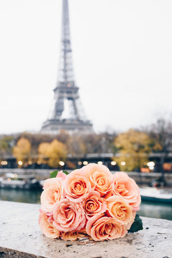 Flowers and rings in Paris Eiffel Tower Eloped Marraige Romantic Wedding Wedding Photography Bouquet Ceremony City Close-up Day Elopement Elopment Flower Focus On Foreground No People Outdoors Peach Pink Color Rose - Flower Roses Tower Travel Destinations Wedding Day Wedding Ring
