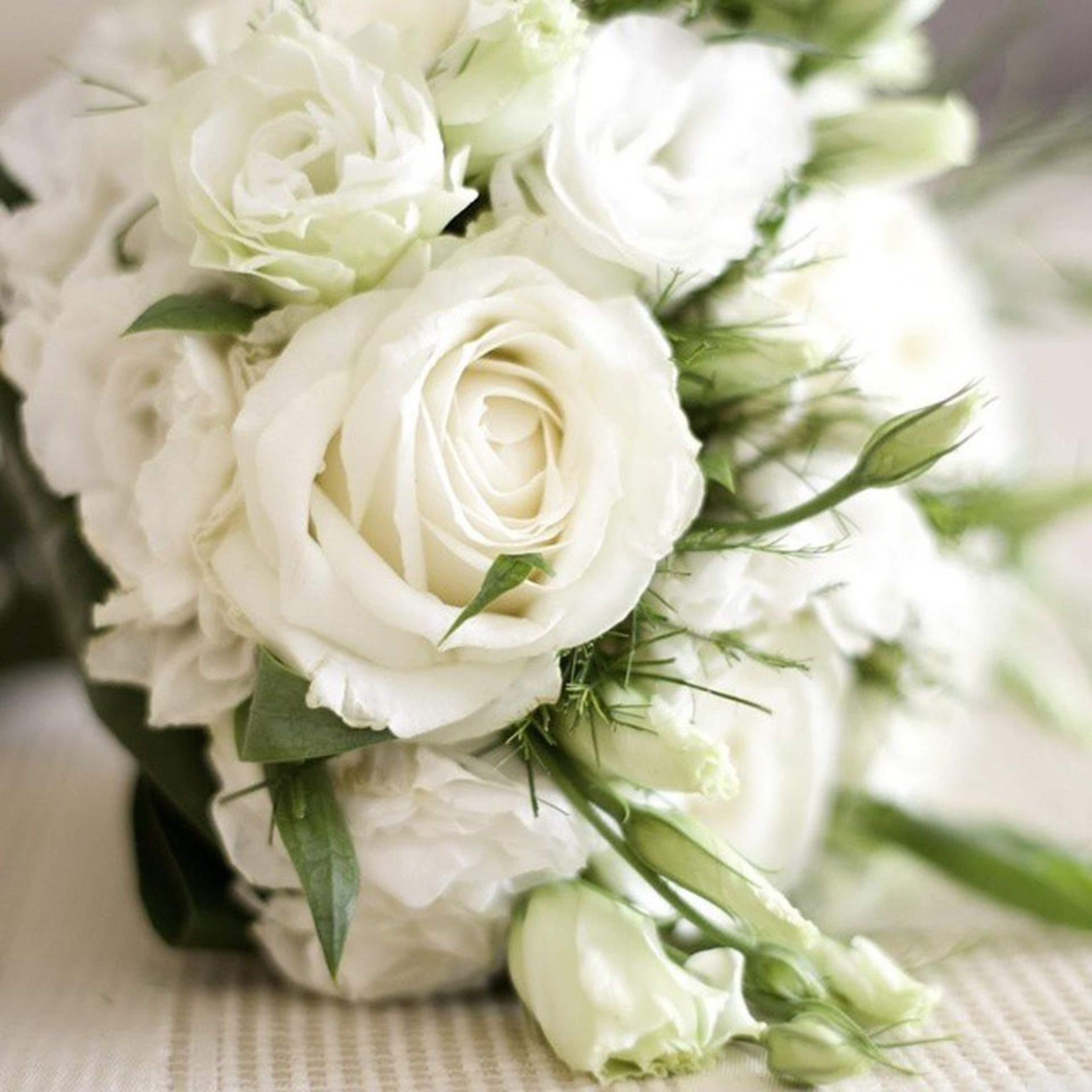 flower, freshness, fragility, petal, flower head, beauty in nature, growth, white color, close-up, bunch of flowers, nature, rose - flower, plant, indoors, blooming, focus on foreground, blossom, bouquet, leaf, high angle view