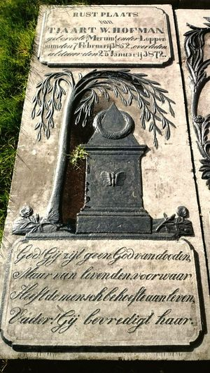 Graveyard Beauty, Gravestone, Life & Death Light And Shadow