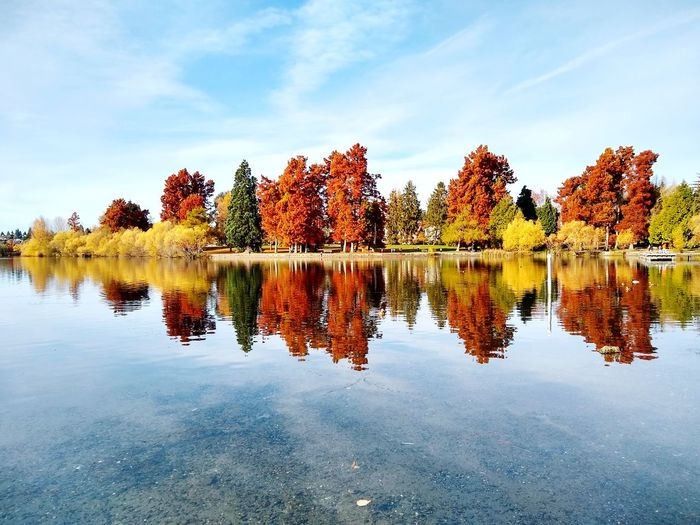 Captured. Fall foliage. A colorful moment. Lake Fall Colors Autumn Tranqility Serene Trail Walks Water Tree Symmetry Lake Reflection Sky Cloud - Sky Autumn Collection Calm Tranquil Scene Autumn Mood EyeEmNewHere