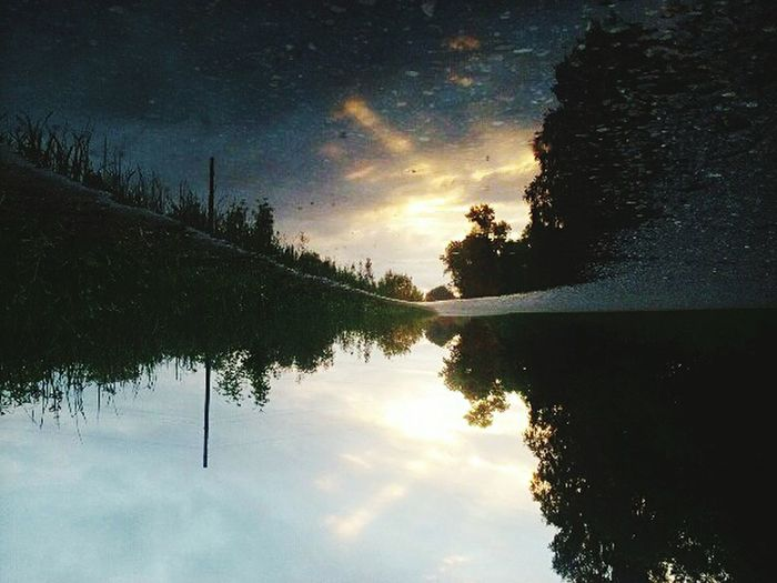 Reflection Sunset Water Tree Lake Nature Cloud - Sky Outdoors No People Beauty In Nature Sky Scenics Landscape Sunlight Dawn Day City