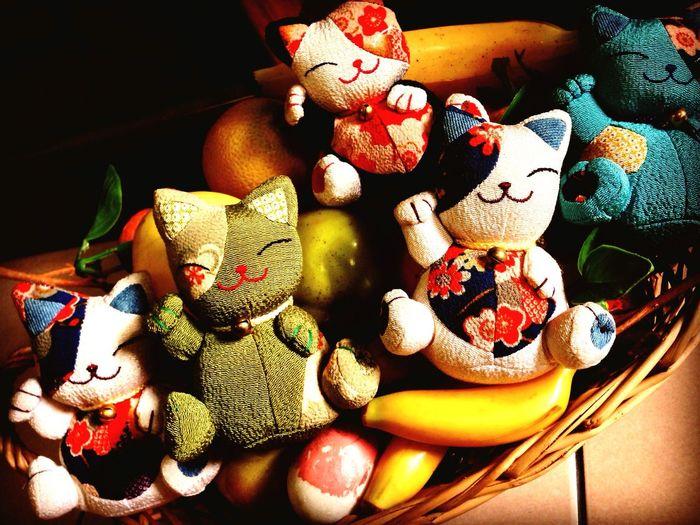 Kittens in basket Catloversworld