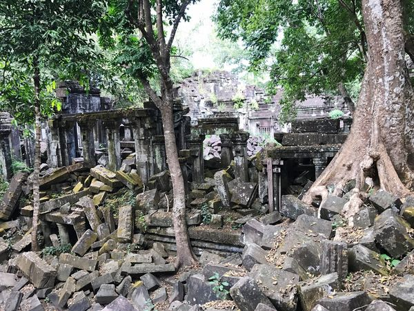 Old Ruin History Tree Ancient Civilization Archaeology Day Hidden Places Broken