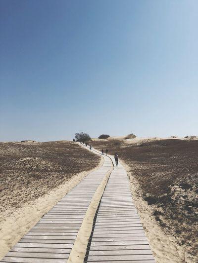 Boardwalk leading towards landscape against clear blue sky