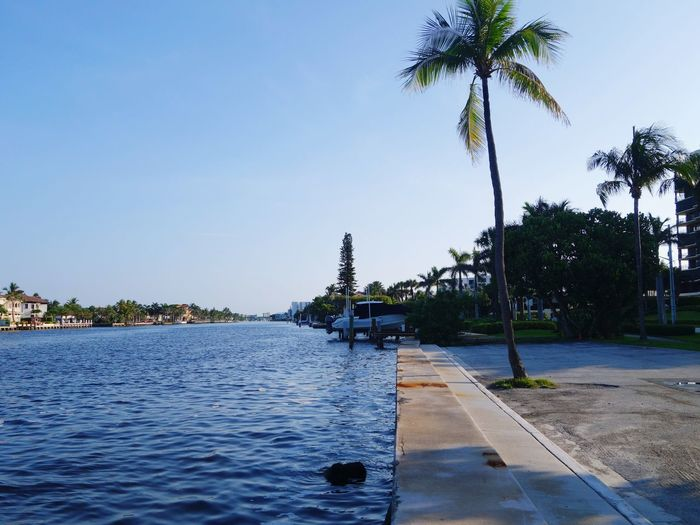 Water Intracoastal Waterway Palm Trees Florida Florida Life