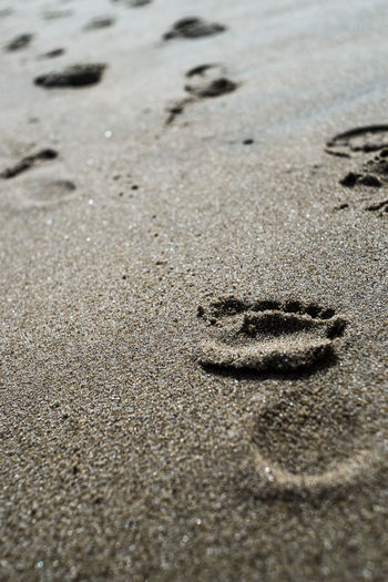 Sand Beach Land