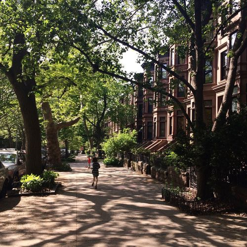 Park Slope Brooklyn New York New York City NYC NYC Street Brownstones
