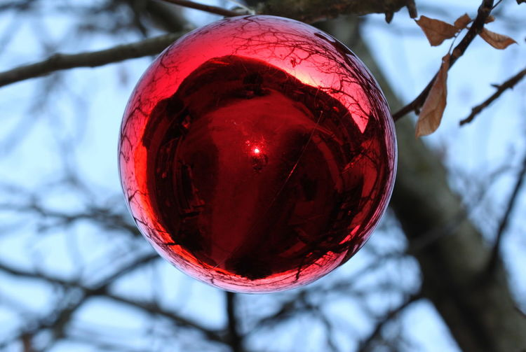 Christmas Decorations Close-up Daylight December 2015 Flash Focus On Foreground Outdoors Rabland,sudtirol Red Selective Focus Wintertime