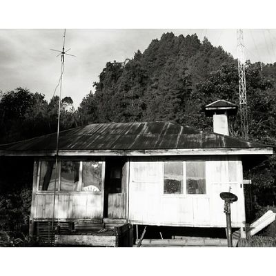 Kalimbuang. Tana Toraya Tribal DiscoverIndonesia Tribalproject