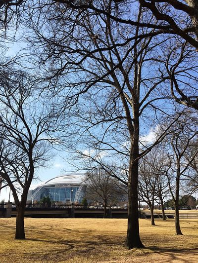 Arlington Texas  ATT Stadium Dallas Cowboys Stadium  Dallas Cowboys Trees Blue Sky Bare Tree Nature Outdoors No People Beauty In Nature NFL Football Stadium