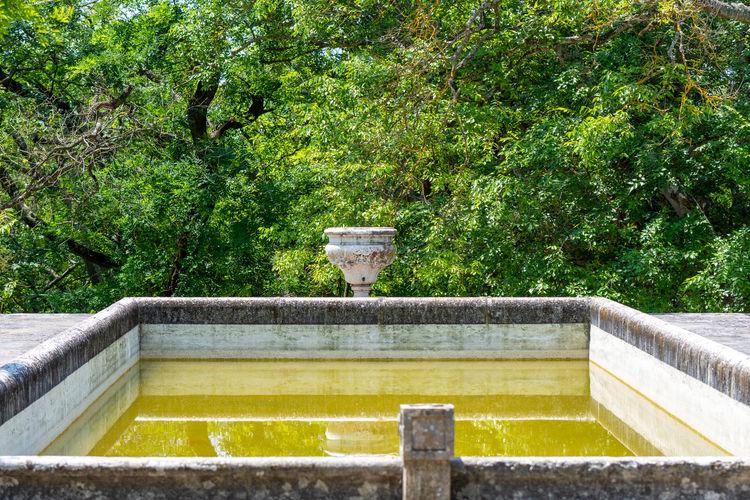 View of fountain in garden