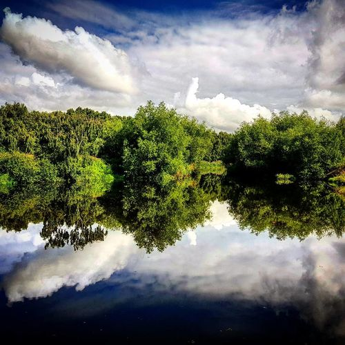 Reflection in River Aire River Reflections In The Water Reflection_collection Nature_collection Nature Photography Naturelovers Landscape Landscape_Collection Landscape_photography Peace Peaceful Peace And Quiet Relax Relaxing Calm Calm Water Cloud - Sky Tree Reflection Sky No People Water Day Outdoors Nature Freshness
