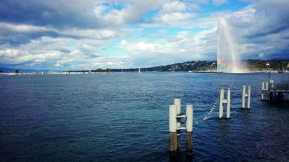 My lake Lacleman Seagulls Naturelovers Crazyclouds Crazysky Wildlife & Nature Jetdeau Sailboats Harbour Rainbow