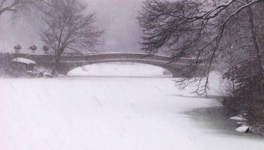 Central Park New York City Bow Bridge