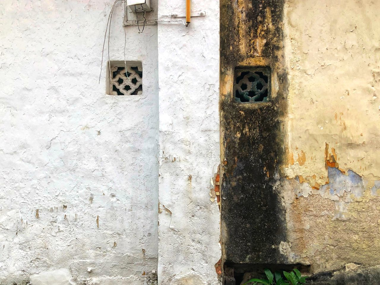 wall - building feature, built structure, architecture, weathered, no people, day, building exterior, old, wall, textured, close-up, hole, outdoors, metal, decline, deterioration, peeling off, rusty, pattern, animal themes, stone wall, concrete