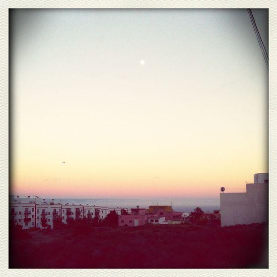 los paseitos con Bimba y el cielo rosa The Sky Moon Skylovers