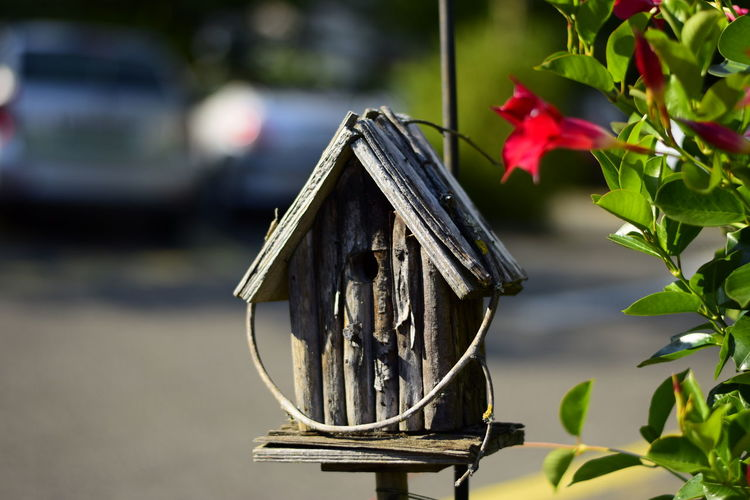 Close-up of small birdhouse by street