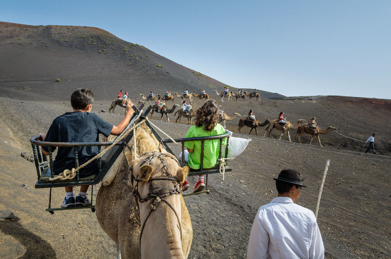 People riding on camels at desert against clear sky