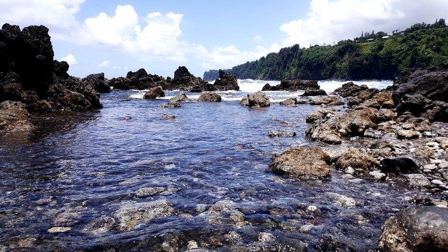tide pools Hawaii Aloha Tree Water Sea Beach Sky Cloud - Sky Pebble Beach Calm Coast