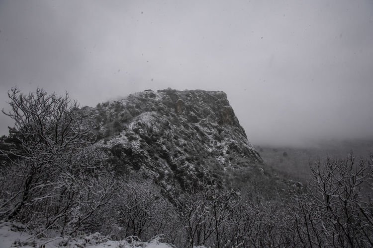Sky Nature Plant Beauty In Nature Tranquility No People Environment Tree Scenics - Nature Day Tranquil Scene Mountain Land Landscape Outdoors Rock Non-urban Scene Fog Cliff
