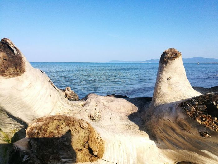 estate Trees And Nature Contemplazione Solitudini My Point Of View Nature EyeEm Nature Beauty In Nature Spiaggia Selvaggia Point Of View WoodLand Sospesa, Tra Cielo E Terra Water Sea Beach Blue Sand Wave Sunlight Clear Sky Sky Horizon Over Water