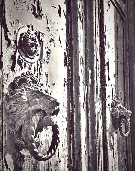 Door My Point Of View The 00 Mission Fresh On Eyeem  My Capture  The Week Of Eyeem Eyeem Photography Hello World Check This Out Taking Photos Street Photography Door Knocker Door Handle Lion Head Design Wooden Door Peeling Paint Old Door Italy Burano, Italy Burano Island Italia Monochrome Fine Art Photography