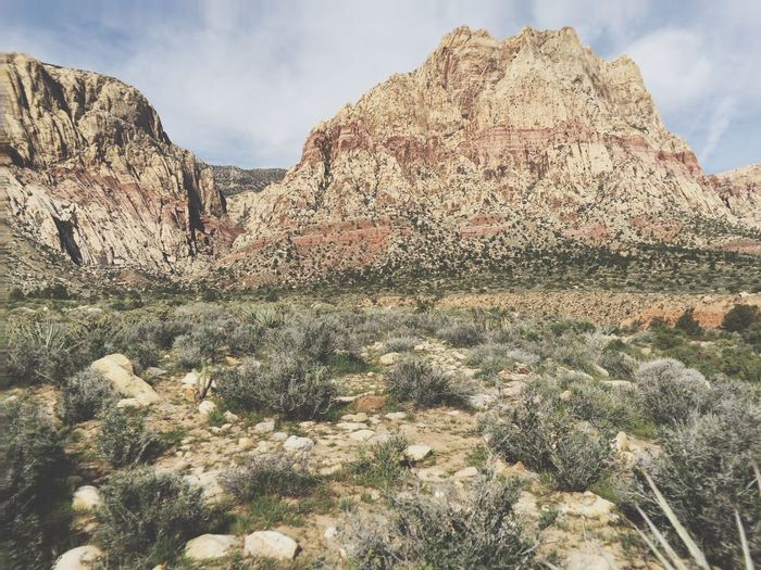 Rocky Mountains At Red Rock Canyon National Conservation Area
