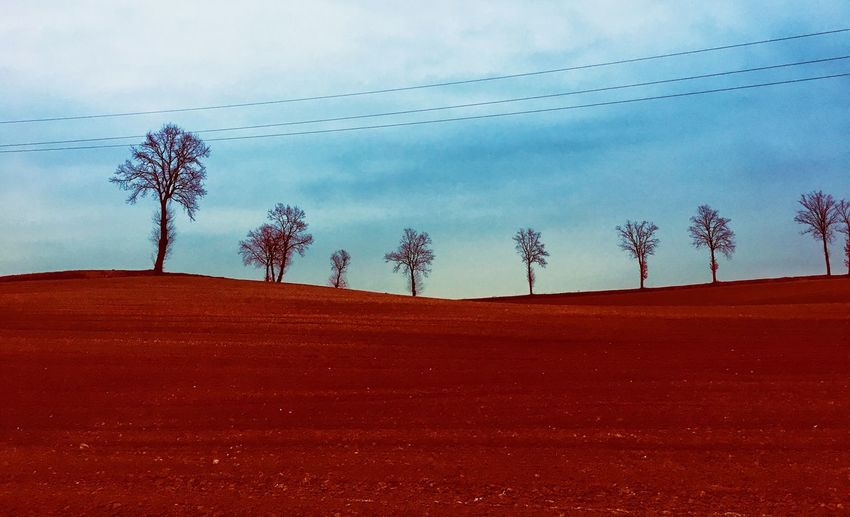Sky Cloud - Sky Nature Land Day Group Of People Plant Environment Outdoors Tree Landscape Sand Red