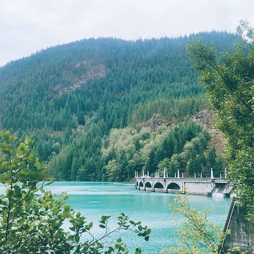 a breath of fresh air || Hiking Diablolake Nature PNW pnwcast pnwcollective thatPNWlife