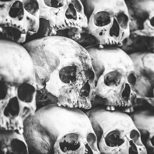 Full frame shot of human skulls