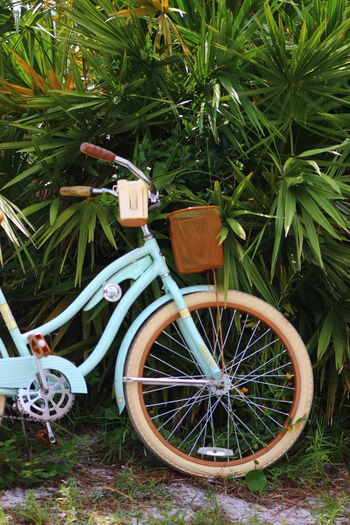 Bicycle Bike Blue Day Field Grass Green Color Growth High Angle View Land Land Vehicle Leaf Mode Of Transportation Nature No People Outdoors Plant Plant Part Stationary Transportation Tropical Theme Wheel