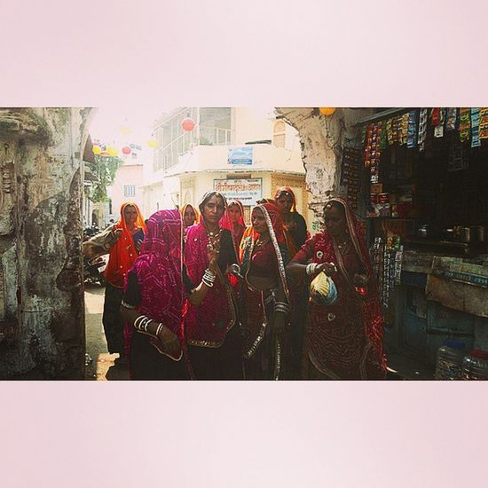 Towards Barmha Pushkar 2014 Day Seven Rajasthan Street People Divine Wisdom Faith Humen Plant Lake Kick Journey Ajmer