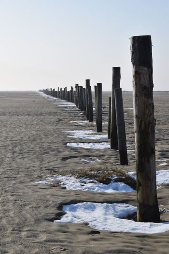 In A Row Travel Destinations Outdoors Tranquil Scene Nature Sankt Peter-Ording Strand Beach Beachphotography Holz Reihe Eiderstedt Nordfriesland Schnee Snow Snow ❄ Cold Temperature Winter