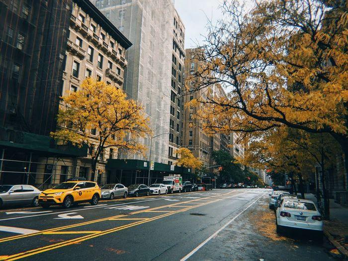 Taxi!.. City