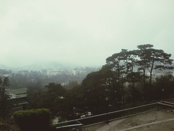 Baguio Breeze! Fog Weather Tree Sky Outdoors City No People Nature Storm Cloud Cityscape Extreme Weather Day Baguio City, Philippines BaguioBliss BaguioWeather Grass Nature Peace Smbaguiocity
