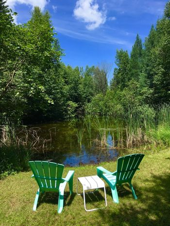 Relaxing Nature_collection Nature Photography Cattails Reflections In The Water Pond Reflections Pond Beach Chairs Plant Chair Tree Seat Nature Absence Sky No People Day Green Color Empty Tranquility Sunlight Growth Outdoors Beauty In Nature Grass Tranquil Scene Cloud - Sky