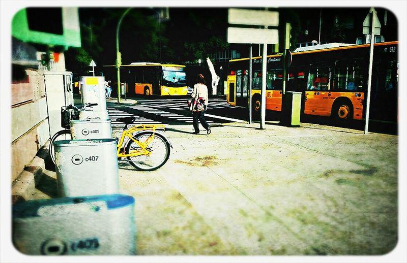 Bus or bike, Which do you prefer? I prefer to walk and ... PHOTO! xD | Guagua o bici, cual prefieres tú? Yo prefiero andar y ... FOTO! xD No Edit No Fun EyeEm Best Edits We Are Photography, We Are EyeEm Streetphotography