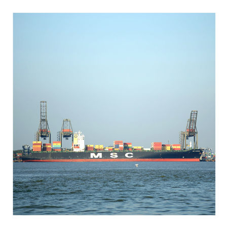 Container Container Ship Containers Containership Cranes Cruiseliner Docking Docks Dockside Engineering Harbour Industry Logistics Maritime Mass Msc MSC Shipping Seagull Seagull And Ship Shipping  Shipping Docks Shipping Liner Stock Transport Vessel